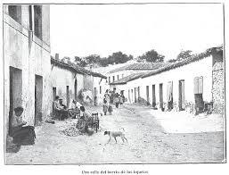 labusca3